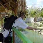 feed-croc-fishing-line