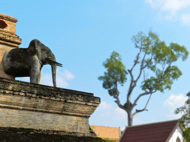 Wat Phra Singh - Elephant on Temple