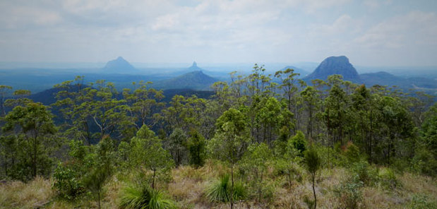 The Glass House Mountains, Queensland.