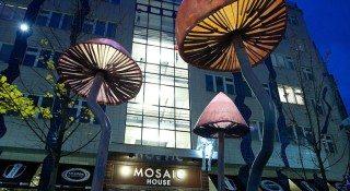 mosiac house