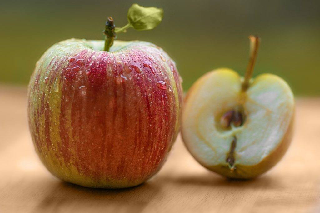 History Of Cider - Apple Cider Alcohol & History Of Apples: Johnny Appleseed