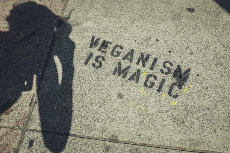 Vegan Gifts - Vegan Gifts for her - Vegan Presents